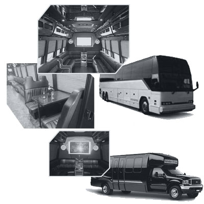 Party Bus rental and Limobus rental in Edmonton AB