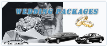 Edmonton Wedding Limos